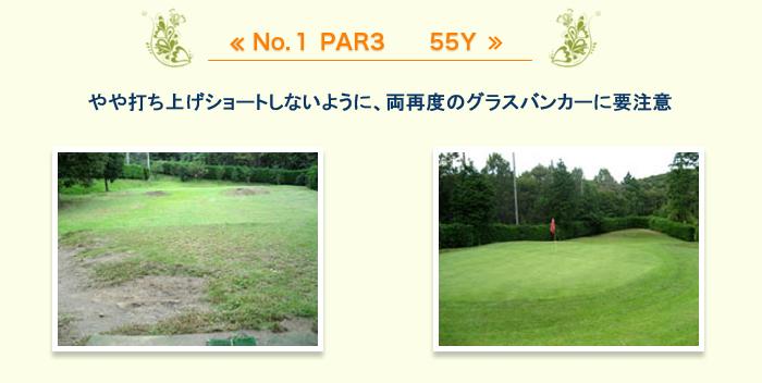 short-course_1